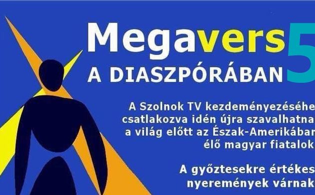 Megavers
